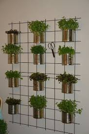 indoor wall mounted herb garden gardening ideas