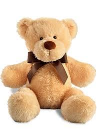 teddy delivery small plush teddy miami gardens florist gift shop miami