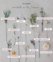 wedding flowers guide seasonal flower guide summer