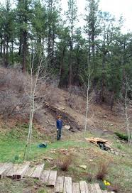 How To Build A Backyard How To Build A Backyard Waterfall Up A Slope Hometalk