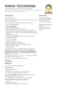 resume format for finance manager finance manager resume cv