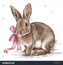 vintage rabbit easter rabbit bunny engrave illustration vintage stock