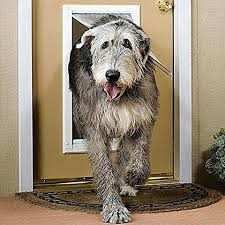 Patio Pacific Pet Doors Patio Pacific Endura Flap Door Mount Dog Door Pet Door U2013 Pet Pro