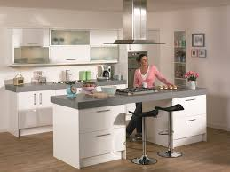 kitchens design d1kitchens the best in kitchen design