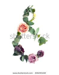 Part Of Flowers - flower ampersand stock images royalty free images u0026 vectors