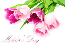 flower happy mother day flowers holiday mothers tulips flower