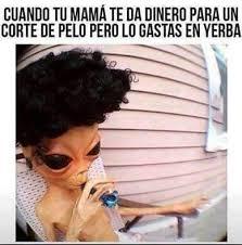 Memes De Marihuanos - pero no todo es miel sobre hojuelas memes