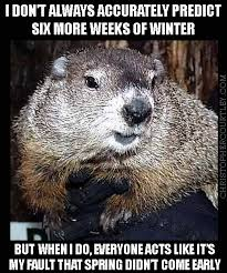 the most interesting groundhog in the world my contributions to