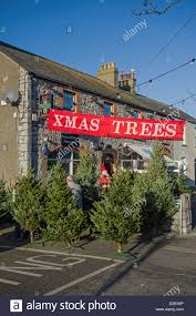 Christmas Decorations Shop In Lakeside by A Pop Up Christmas Tree Shop In Skerries County Dublin Ireland