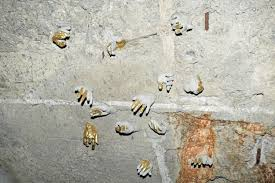 free images bird wall insect fauna memorial hands
