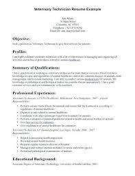 cv format for veterinary doctor veterinary assistant resume veterinary resume exles volunteer
