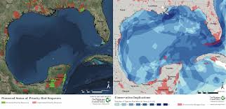 Map Of The Gulf Of Mexico by Searching For Whoopers New Report Showcases Gulf Of Mexico