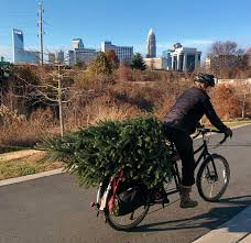christmas tree delivery bikerumor pic of the day christmas tree delivery bikerumor