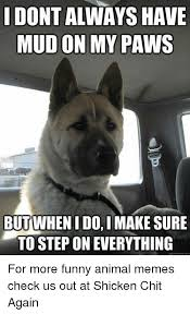 Memes Funny Animals - dontalways have mud on my paws but whenidoimake sure to step on