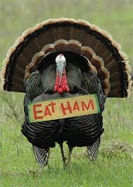 eat ham thanksgiving image pictures photos and images for