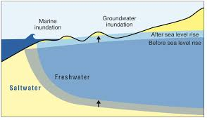 Groundwater Table Sea Level Rises Much Of Honolulu And Waikiki Vulnerable To