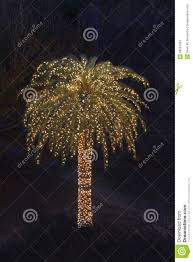 solitary palm tree decorated with christmas lights stock photos