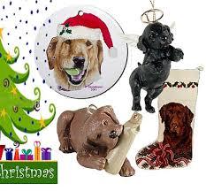 labrador retriever gifts com christmas cards u0026 decor