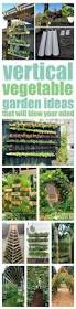 a vertical vegetable garden can be the mind blowing solution to