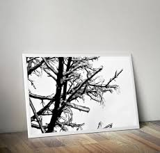 tree branches photography winter wall art minimal print ice storm