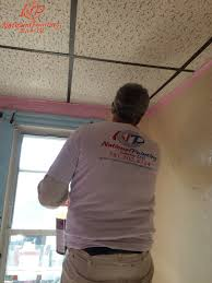 national painting service llc online