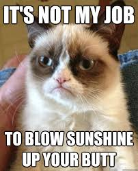 Not My Job Meme - its not my job to blow sunshine up your butt grumpy cat giggle