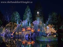 the festival of lights bringing the magic of christmas to life