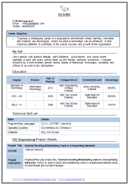 Resume Examples For Information Technology by Over 10000 Cv And Resume Samples With Free Download Information