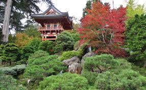 Botanical Gardens Golden Gate Park by Golden Gate Park Humbled Pie