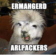 alpaca memes google search alpacas pinterest alpacas