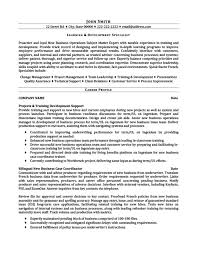 Underwriter Resume Examples by Learning And Development Specialist Resume Template Premium
