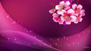 Pink Color Widescreen Pink Background Hd Image Pc Colour Pink Pinterest Hd