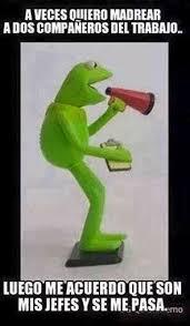 Memes Rana Rene - 105 best la rana ren礬 images on pinterest funny stuff jokes and