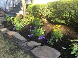 simple front yard makeover before and after heirlooms at home