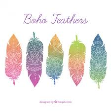 colored feathers with ornaments in boho style vector