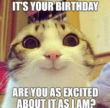 Cat Birthday Memes - joke4fun memes happy birthday