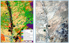 native plants of mexico remote sensing free full text analyzing landscape trends on