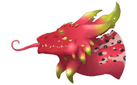 15 spectacular dragon fruit clipart fruit names a z with pictures
