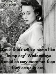 Hump Day Memes - out lou u d think with a name like hump day wednesdays way m ah