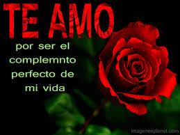 imagenes de amor con rosas animadas frase te amo en animada con rosa mi amor pinterest imagenes de