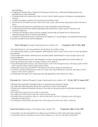Military Resume Format Sphinx Research Paper Essay On My Favorite Movie Harry Potter