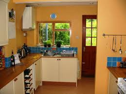 Kitchen Color Schemes With Painted Cabinets by Stylish Kitchen Color Schemes
