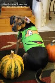 Manatee Halloween Costume Minute Diy Dog Halloween Costumes Baby Onesies