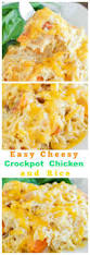 Main Dish Crock Pot Recipes - best 25 easy crockpot recipes ideas on pinterest crockpot meals