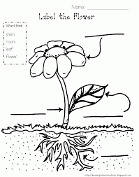 100 coloring page plants 100 plants vs zombies coloring