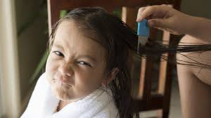 Will Lice Treatment Ruin Hair Color Headlice Everything You Don U0027t Want To Know