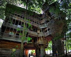 23 amazing and cool tree house designs