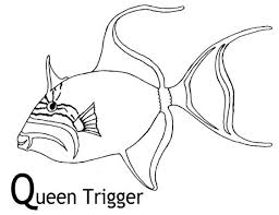 trigger fish colouring pages bebo pandco