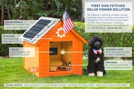 house dogs white house addresses climate change first dog bo uses solar