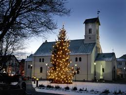 a wee advent story about some traditions and a tree